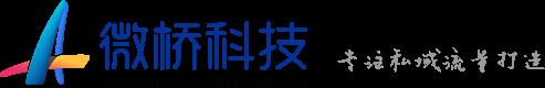武汉微桥科技|武汉软件开发公司|武汉小程序开发公司|武汉商城开发|武汉客服系统开发